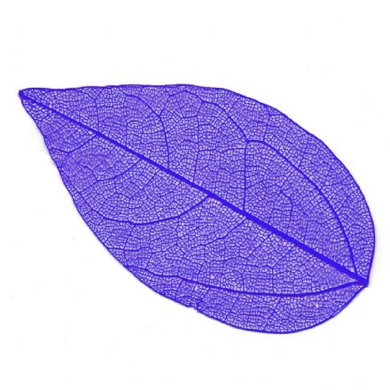 Skeleton Leaves Blue  4-6 cm, 10 pieces  (24106)